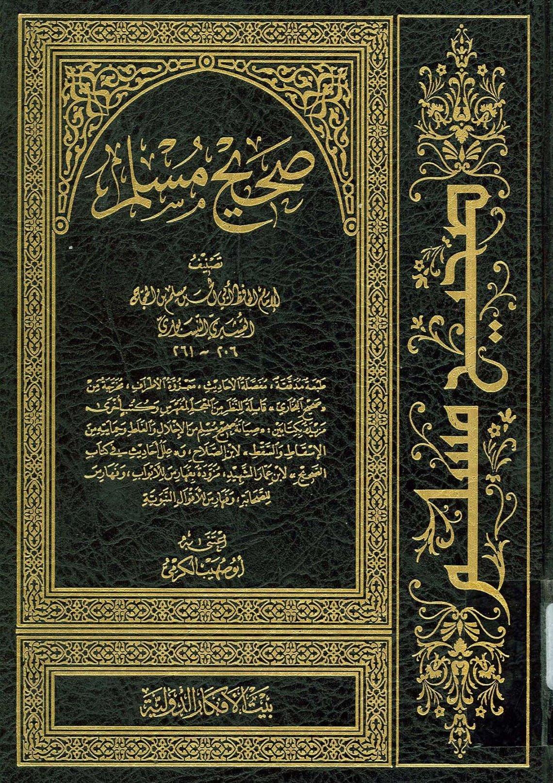الرد الملجم على صحيح مسلم (الجزء الثالث)