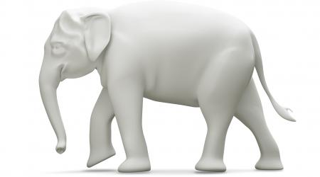 هل الإسلام دين أم فيل أبيض؟